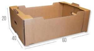 caja fruta 60